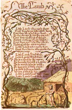 the tyger by the author william blake Sophisticated illustrations of the roaming ``tyger'' amid the ``forests of the night'' accompany blake's famous poem shadowy black-and-gray spreads feature window-like insets of the dazzling color co.